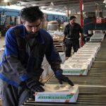 کارخانجات کاشی و سرامیک در آستانه تعطیلی